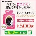 バンビウインク 500円モニター
