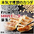 PUMP UP 500円モニター